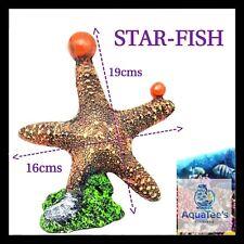 ARMADA AQUARIUM FISH TANK DECORATION STARFISH 19CM ORNAMENT AQUA FRESH WATER
