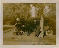 GA68 Original Photo CAR VS TREE Vintage Auuto Smashed Collision Accident Scene