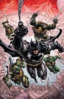 Batman/Teenage Mutant Ninja Turtles: Helden der Krise