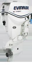 Adesivi motore marino fuoribordo Evinrude e-tec etec 90 , 115 , 150 hp scegli!!