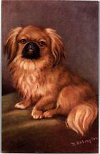 Artist M. Babington Pekinese Dog Vintage Postcard R11