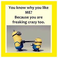 4x4 FRIDGE MAGNET SILLY MEME FUNNY MINION HUMOR Crazy Too
