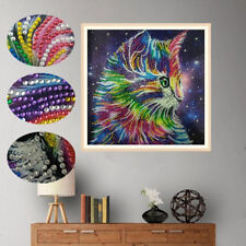 5D special shape diamond painting colorful cat DIY diamond embroidery home dec I