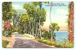 1943 Scenic Drive Along Florida Beautiful Indian River Linen Posted Postcard B23