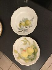 Two Rosenthal Maria Fruit Peach Apple Plates