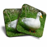 2 x Coasters - White Call Duck Ducks Cute Home Gift #2283