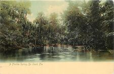 Vintage Postcard A Florida Spring De Land FL Volusia County