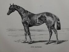 1831 ANTIQUE FARRIER HORSE PRINT ~ ALICE HAWHORN