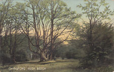 UK LONDON WALTHAM FOREST CHINGFORD DIVIDED BACK POSTCARD CIRCA 1907