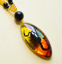 Artificial Insects Amber Chinese Scorpion Inclusion in Pendant Necklace ♫