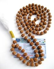 6 Mukhi Rudraksha Mala / Six Face Rudraksha Mala / Mars Mala - 109 beads - 8 mm