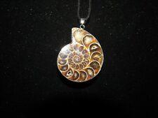 """Ammonite Fossil Pendant!  1 3/4"""""""