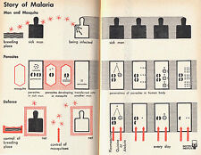 Otto NEURATH, Isotype 1945, in:  Abercrombie: New Biology