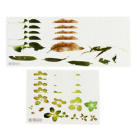 10 Sheets Self Adhesive 3D Leaves Resin Painting Stickers Embellishments