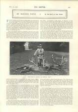 1903 The Kaiser In Austria An Imperial Bag Stags