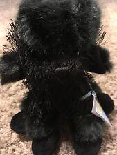 NWT & CODE Ganz Webkinz BLACK POODLE HM191 Shiny Fur Bean Bag Plush