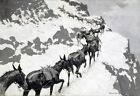 The Mule Pack by Frederic Remington Giclee Repro Canvas