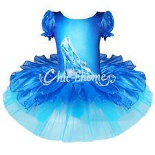 Girl Kid Princess Cinderella Ballet Dance Tutu Dress Dancewear Christmas Costume