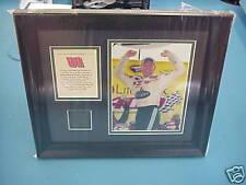 Dale Earnhardt Jr. #88 AMP/National Michigan framed pic