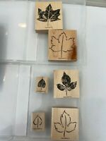 Stampin' Up! Lovely Leaves - 2 Boxes - Set of 6 Stamps - Scrapbooking Crafts Art