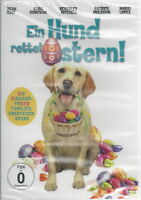 DVD + Ein Hund rettet Ostern + Film für die ganze Familie + Abenteuer + Spaß