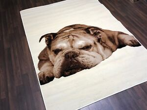 Modern 6x4ft 115x165cm Woven Backed Bulldog Dogs Rugs Top Quality Creams/Beiges