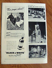 1941 Black White Scottish Scotty Terrier Westie Ad Two Jumps Ahead