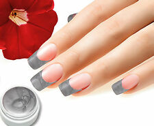 UV Farbgel 01 Silber Metallic 5ml Colorgel, Top Studioqualität von BC-Top-Nails