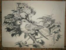 dessin fusain oiseau signé dany 1/1991 original
