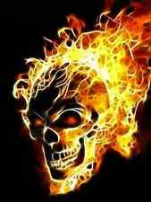 FLAMING SKULL CROSS STITCH CHART BN!