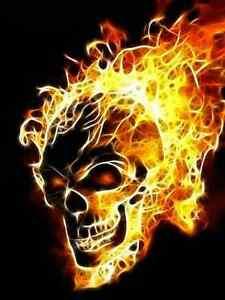 FLAMING SKULL CROSS STITCH CHART BN!