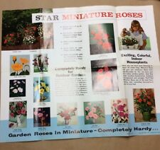 Star Miniature Roses Poster 1966 INV-P360