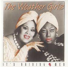 The weather Girls: IT 's raining MEN/CD-top-état