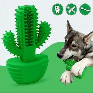 Dog Toothbrush Dental Care Oral Accessories Breath Cactus Molar Stick Non Toxic