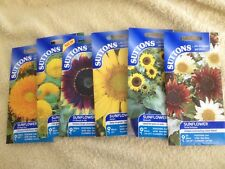 BARGAIN JOB LOT 50 PACKETS OF PERFECT SUTTON  MIXED  SUNFLOWER SEEDS .24p A PACK