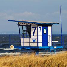 6 Tage Urlaub Usedom Reiterferien Ferienpark Benz Ostsee Küste Wellness Strand