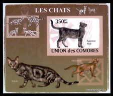 COMORES EPREUVE DE LUXE KATZEN KATZE CATS CAT CHAT GATOS GATO DELUXE SHEET dr70