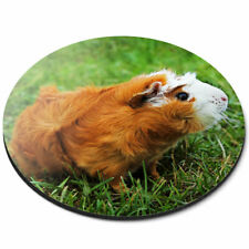 Round Mouse Mat - Ginger Guinea Pig Rodent Office Gift #15574
