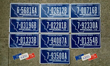 10 MONTANA BLUE FLAT LICENSE PLATES TAGS DECOR BULK SET LOT ART BIG SKY LQQK
