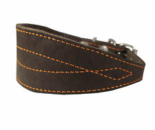 "Real Leather Tapered Extra Wide Whippet Dog Collar 2"" Wide, Fits 11.5""-15"" Neck,"