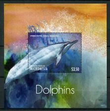 Micronesia 2013 MNH Dolphins Spinner Dolphin 1v S/S Marine Mammals Stamps
