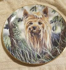 "Danbury Mint Yorkshire Terrier Dog ""Into The Woods"" Plate By Paul Doyle  A1278"