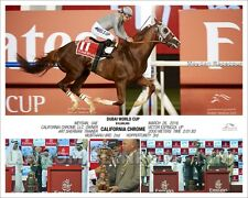 CALIFORNIA CHROME DUBAI WORLD CUP $10 Million Meydan UAE 11 x 14