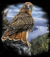 golden eagle youth t-shirt boy girl beautiful school shirt adult s m US sz>