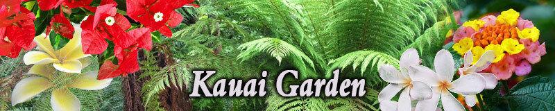 kauaigarden