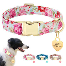 Fashion Dog Collar With Personalized ID Nameplate Customized Free Engraving Tags