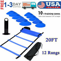 Fitness Speed & Agility Ladder Training Equipment 12 Rung With 10 pcs Disc Cones