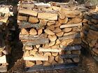 Firewood  100% aged oak for sale by the pallet   12 months old Located IN NJ