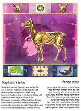 Pisces, the tribe of Naphtali, Agate birth stone, Jewish Horoscope postcard