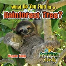 WHAT DO YOU FIND IN A RAINFOREST TREE? - KOPP, MEGAN - NEW BOOK